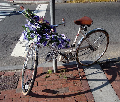 bike flowers