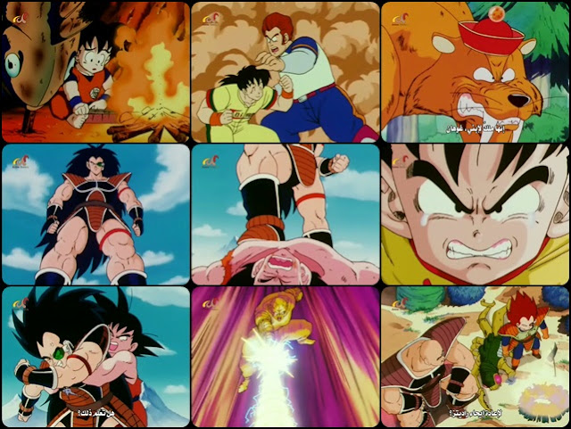 Dragon Ball DBZ_pic.jpg