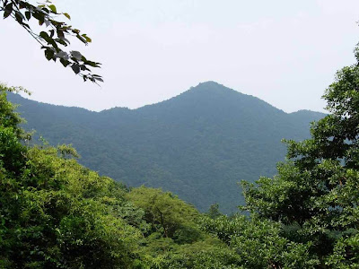 Discover Shenzhen's Highest Peak atop Breathtaking Wutong Mountain