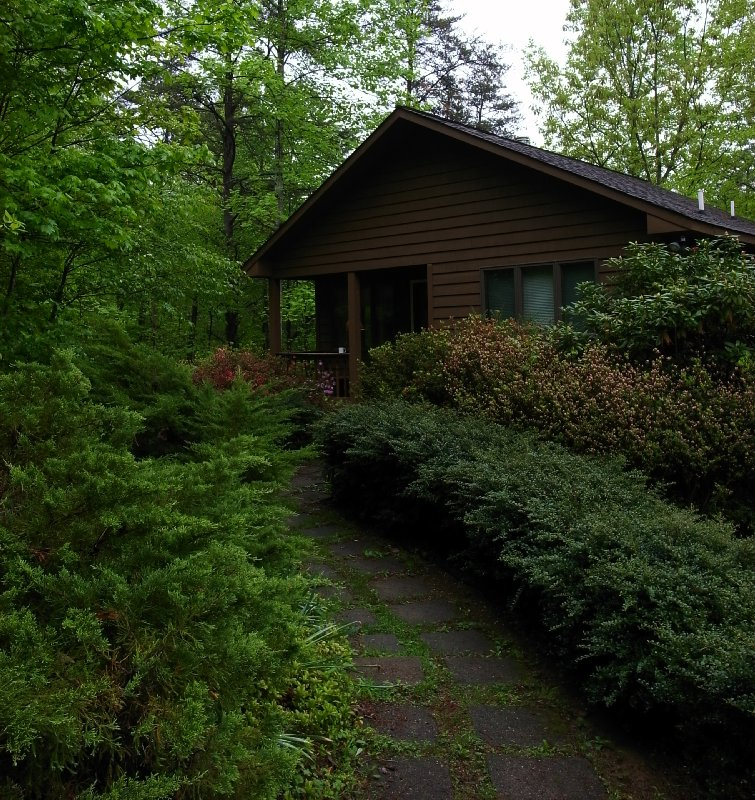 The Creek House cabin...