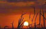 El día trae la luz para ver el camino