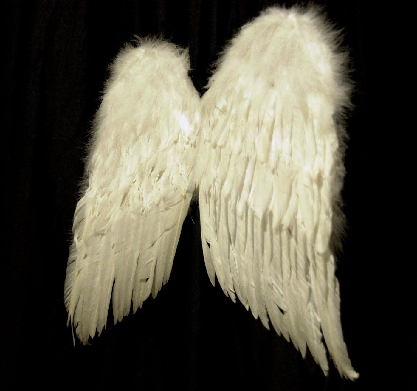 tak sampai atau cintanya tertolak seperti sayap sayap gibran yang