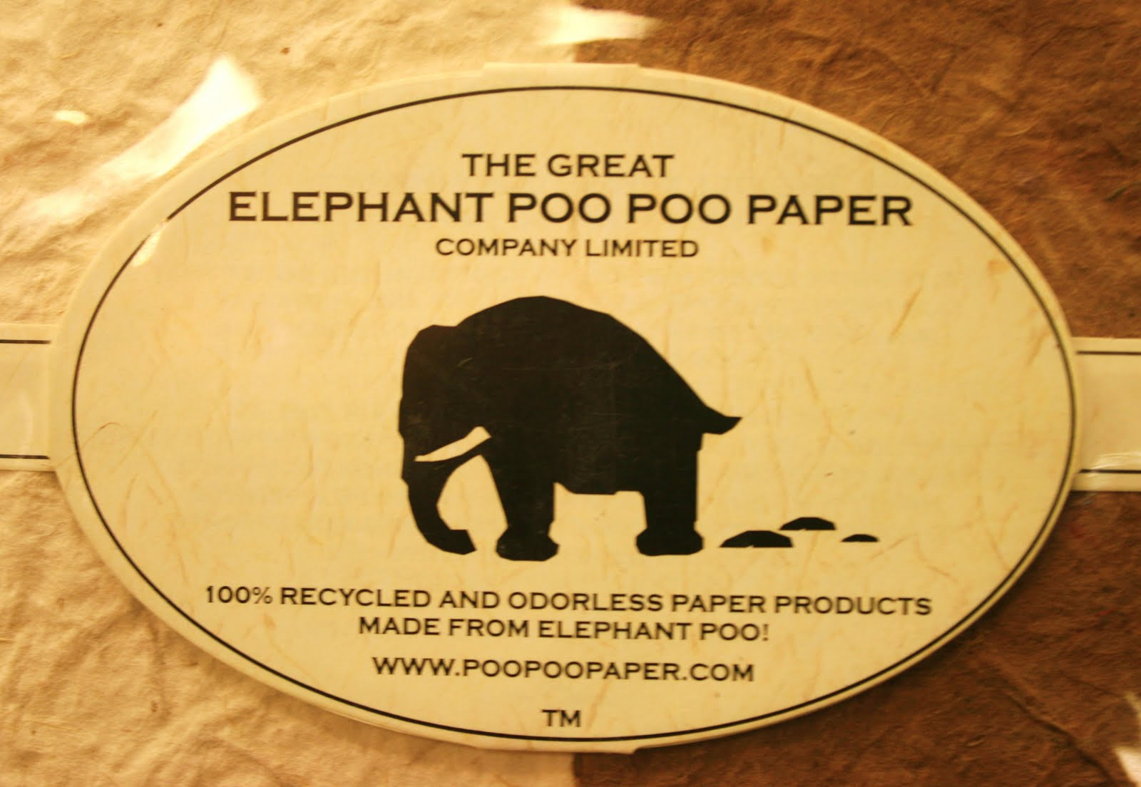 Elephant Clip Art Writing
