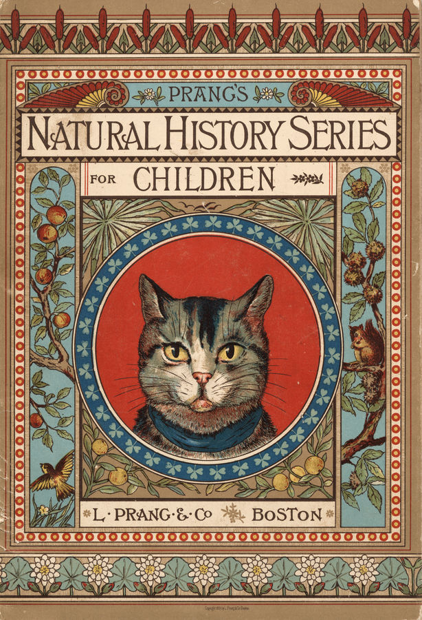 Food Book Cover History : Animalarium creatures of christmas past