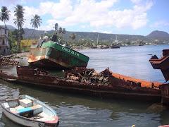 DOMINICA 15. Victimas de los huracanes
