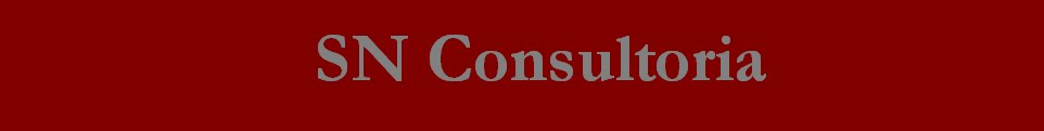 SN Consultoria