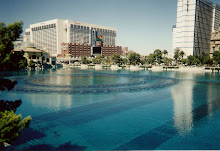 Daytime View of Bellagio Lake
