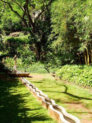 Екзотични хавайски цветя