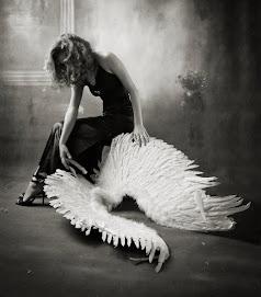 el peso de las alas