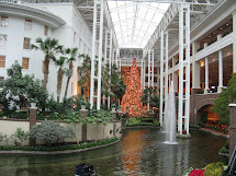 C2c Christmas Light Opryland Nashville