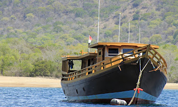 READ ABOUT KOMODO ISLAND and the dragons (Click Photo)