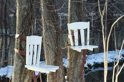 Creative Tree Furniture