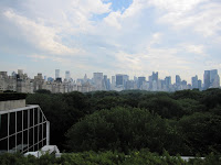 The view from Met Rooftop Garden