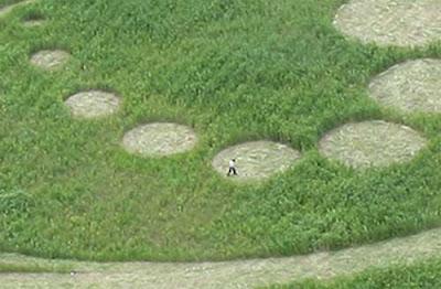Crop Circles Koreacircle3