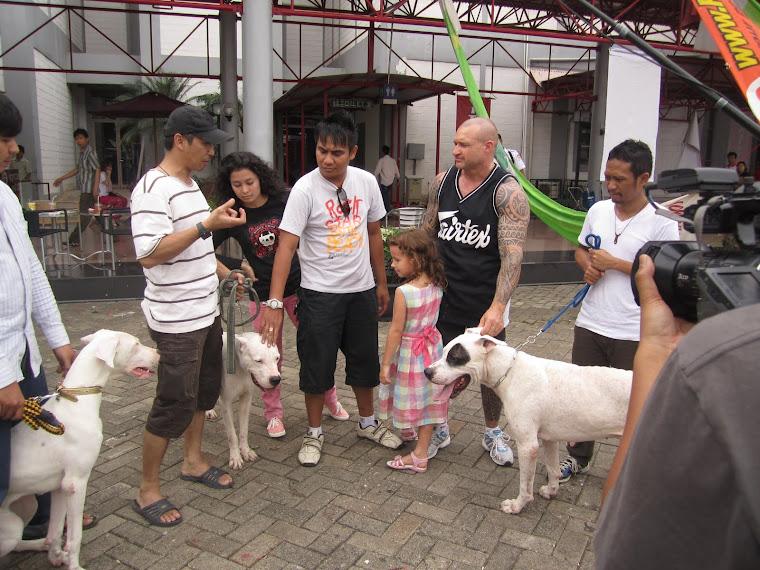 Dogo Gathering