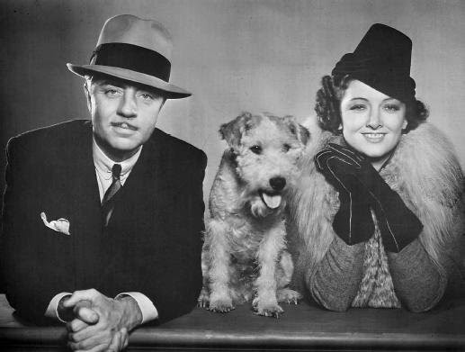 Nick And Nora S Dog Asta