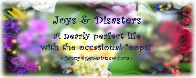 Joys & Disasters