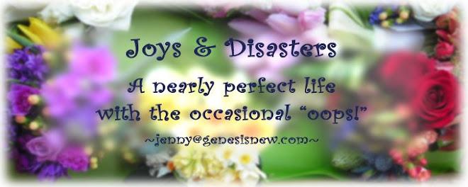 Joys & Disasters