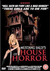 Baixe imagem de A Casa de Terror de Madame Sally (Dublado) sem Torrent