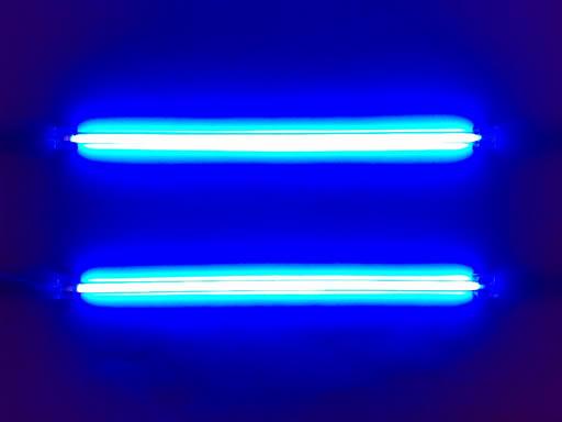 L E G I T E R A L L Y Neon Lights