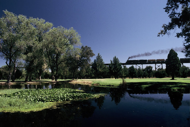 Union Pacific Steam Locomotive Trundles Over Sacramento River Bridge at Redding, California