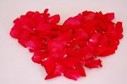 rosas de amor. (amorsoloamor)
