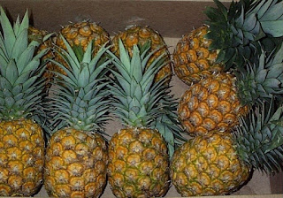 pineapple peelings to vinegar Pdf | this study aimed to reduce post-harvest losses of pineapple local variety egbenana by the transformation of juice into vinegar through biotechnological processvinegar was produced through.