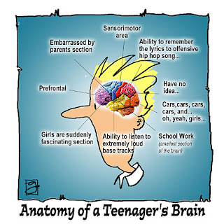 inside the teenage brain Scs training course inside the teenage brain this one day training course is for professionals already working with teenage children and families offering counselling, therapy or therapeutic support.