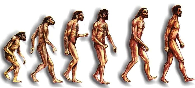 donde va el ser humano: