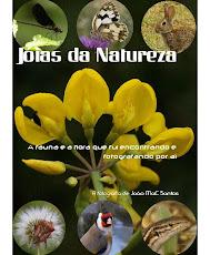 ESTE É O MEU 1º VOLUME DE JÓIAS DA NATUREZA