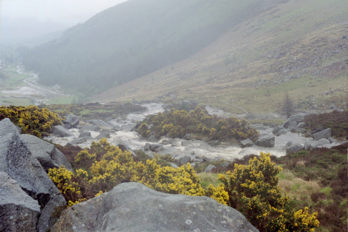 County Wicklow, Ireland