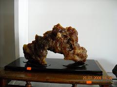 霹靂盆栽雅石协会观摩赛雅石得奖作品08