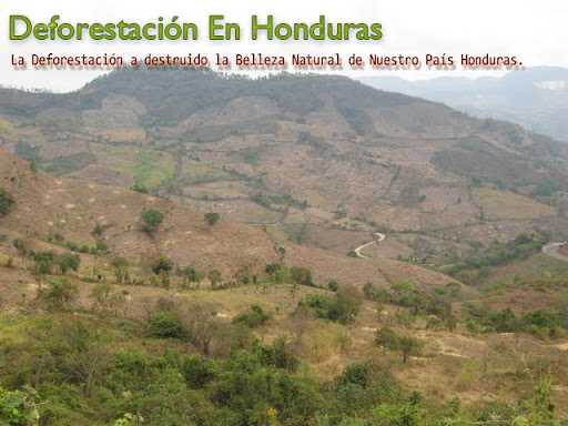 Deforestación En Honduras