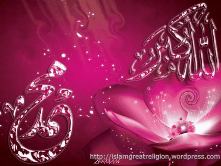 Wallpaper Islamic on Islamic Wallpapers  Allah Akbar Muhammad Pbuh In Pink