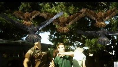 Birdemic, defensa con perchas