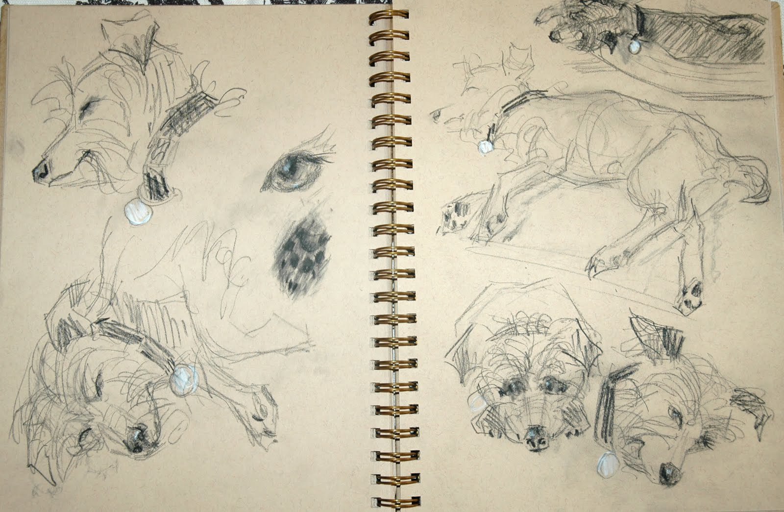 The Line Art Challenge Sketches For Days : Portrait painting gold by johanna spinks a dog s life days