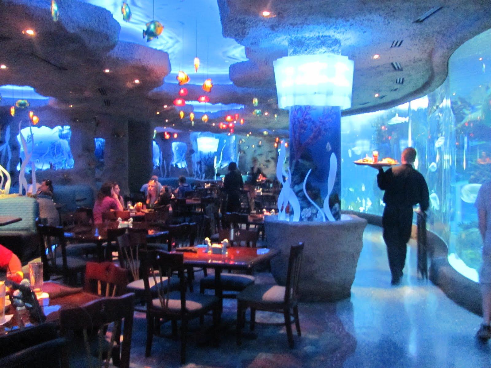 Aquarium Resteraunt Nashville Images Frompo 1