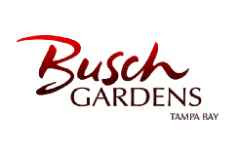 Bud and BBQ at Busch Gardens in Tampa Bay!
