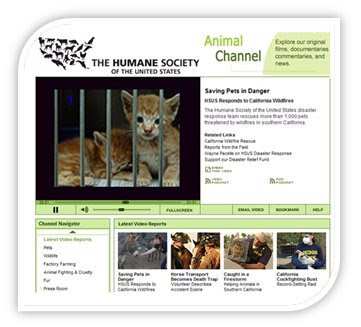Image of Charity Network Example