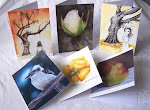 BUY  Cards & Prints