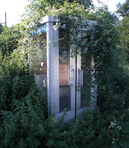 Dilapidated-telephone-booth.jpg (450×517)