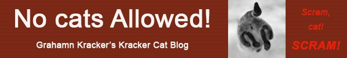 No Cats Allowed - The Kracker Cat Blog