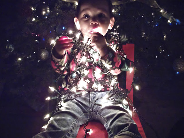 Delaney with Christmas lights