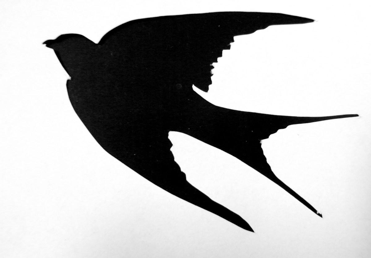 saraccino: It t... Sparrow Stencil