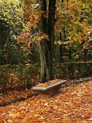 El otoño pasado, por estas fechas, la Alhambra lucía esta colorida alfombra. alhambra