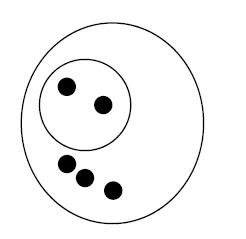 Conjunto dos números racionais frações 1/3