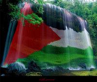 فلسطين حره عربية ....