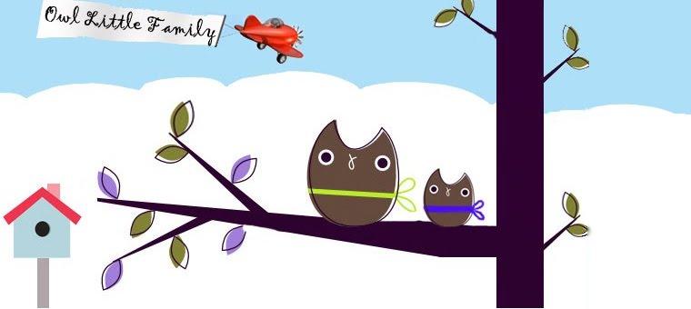 Owl Little Family