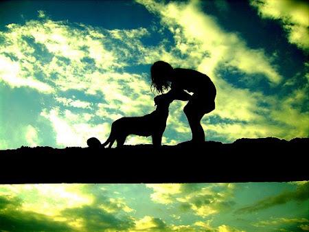Repito: só dê ouvidos a quem te ama. Tudo mais é palavra perdida, sem alvo e sem motivo santo.