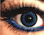 Porque Quando Todas as Palavras se Escondem, Tudo o Que se Precisa Falar Está Nos Olhos...